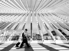 (Magdalena Roeseler) Tags: street people blackandwhite bw lines architecture pattern candid fineart olympus calatrava sw liege strassenfotografie streettog