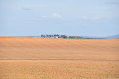 Rural Countryside (Merrillie) Tags: trees nature rural landscape countryside nikon australia dirt nsw fields farms bathurst paddocks d5500 orangensw centralwestnsw