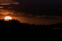 Puesta Sol en Pollos de la Mesa (RamnP) Tags: sunset sun clouds landscape photography flickr paisaje cielo puestadesol nube anochecer cazorla airelibre tamron70300 landscapephotography nikonphotography sierradecazorlaseguraylasvillas fotografadenaturaleza nikond750