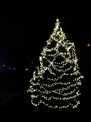 IMG_7127 (ConiferNYC) Tags: nyc harlem christmastree christmaslights newyorkatnight saintnicholaspark