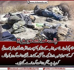 !!                                      http://www.shiitemedia.net/ur/index.php/9020 (ShiiteMedia) Tags: pakistan shiite                 shianews       shiagenocide shiakilling   shiitemedia  shiapakistan mediashiitenews            httpwwwshiitemedianeturindexphp9020shia