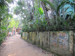 IMG_6917.jpg (Kuruman) Tags: sylhet bangladesh srimangal
