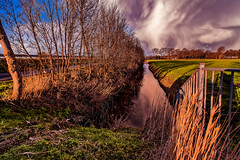 Even With My Back Against The Fence I have To Make This Picture (Alfred Grupstra Photography) Tags: trees light sky water grass clouds fence landscape nikon nederland nl noordholland twisk