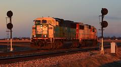 D79 at Abel (HighHor$epower) Tags: sunset bn searchlight abel dawson sd60m railroadsignal leasers pacingshot nsd79 cbfx6027 triclopssd60m