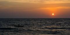 Pescar 4 (Raíces anónimas) Tags: costa arbol atardecer mar colombia pescador caribe pescar pelícano islafuerte arbolquecamina