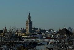 Sevilla (Landahlauts) Tags: sevilla seville andalucia panoramica andalusia andalusien sville andalousie andalusie siviglia  andaluzia andaluzja sewilla andaluzio    endls      endulus        andalouzia andalusiya   ishbiliya fujifilmxpro1 fujifujinonxf60mmf24  nf endls andalusi capitaldeandalucia