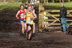 DSC_4875 (Adrian Royle) Tags: snow sport hail athletics nikon gate mud action hill running racing lancashire blackburn crosscountry runners athletes xc wittonpark
