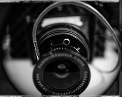 2016-045007a.jpg (HoodedOne) Tags: macro film netherlands dutch polaroid blackwhite zwartwit nederland ishootfilm negative instant 4x5 t55 sheetfilm vuescan epsonperfectionv750pro vlakfilm jml5619 wanderlusttravelwide4x5 polaroid545pro