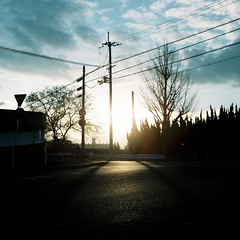 Will Change_1_ 013 (Kahori YAGI_Kahoring) Tags: road light sunset shadow sky sun sunlight 120 film silhouette zeiss square fuji jena medium pentacon p6 pentaconsix arax fujicolor czj carlzeissjena biometar pro400