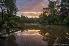 Taman Bukit SUK Sunrise (Shamsul Hidayat Omar) Tags: lake reflection tourism sunrise photography interesting nikon scenery raw places scene malaysia omar taman bukit selangor shah alam suk hidayat greatphotographers shamsul d800e