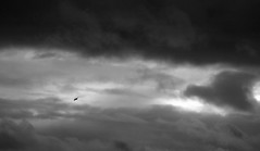 Solent_sky (stugee) Tags: light 2 white black blanco monochrome mono noir fuji y x shade solent fujifilm et isle blanc fujinon negra wight noire e2 xe xe2 50230mm