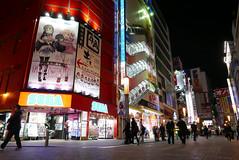P1020059.jpg (Ryosuke Yagi) Tags: building night buildings tokyo town view shot nightshot scene electronics  akihabara nightscene nightview electronic   electronictown