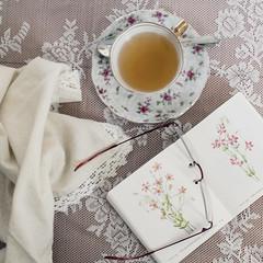 Tea Time (Caz Ann) Tags: stilllife white flower