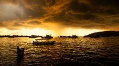 atardecer en Tawau (Borneo) (www.infografiagijon.es) Tags: houses sea canon island mar floating asturias malaysia borneo casas gijon isla sabah xixon markii malasia asturies flotantes tawau infografia astur eos5d semporna hernancad wwwinfografiagijones