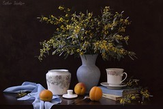 Happy International Women's Day to All Flickr Ladies...! (Esther Spektor - Thanks for 11+ millions views..) Tags: flowers blue stilllife food orange brown white green cup glass yellow fruit composition canon ceramics pattern availablelight napkin silk plate stilleben spoon vase apricot bouquet mimosa greeting tabletop lid bodegon sugarbowl naturemorte naturamorta womensday naturezamorta creativephotography artisticphoto estherspektor