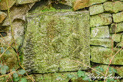 #wall Balleen County Kilkenny Sle-na-gig in the back garden wall (Salmix_ie) Tags: county kilkenny ireland megalithic stone ancient nikon worship gig craft carving historic christian pre druid february nikkor fertility 2016 silenagig sheilana