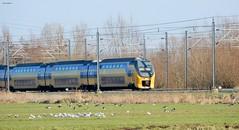 NS type V-IRM bij Woerden (bcbvisser13) Tags: birds nederland eu grassland polder meeuwen weiland intercity woerden virm bovenleiding spoorbaan gansen nstype