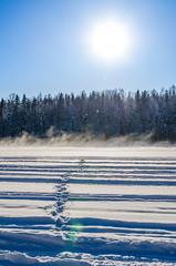 öppet vatten (Patrik Öhman) Tags: snow ice danger river stream footprints vatt fotosondag fs160228