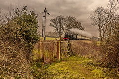 WSR_2016_03_11_080 (Phil_the_photter) Tags: watersmeet minehead leighwoods wsr 7f westsomersetrailway 8f 53808 53809 34098 standardtank templecombe 48624 80043 80072 roebuckcrossing