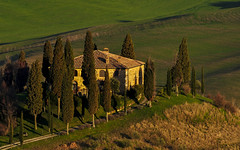living on the hump (Blende1.8) Tags: italien trees italy building tree landscape nikon italia hill tuscany villa nikkor residence toscana 70300mm landschaft bume baum gebude cypresses hump warmlight toskana hgel wohnhaus abendlicht zypressen d5000 carstenheyer