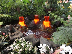 2016 PHS Philadelphia Flower Show (Joe Architect) Tags: philadelphia flowershow pennsylvania 2016 pa travel philly centercity centercityphiladelphia philadelphiaflowershow pennsylvaniahorticulturalsociety phs