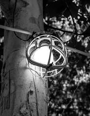 Old light (hermilo87) Tags: old light cobweb