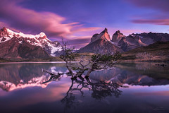 Hurry up and dream (Jay Daley) Tags: chile patagonia lake mountains tree southamerica sunrise nikon torresdelpainenationalpark d810 carlzeiss15mm