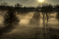 Long Rays (Klaus Ficker --Landscape and Nature Photographer--) Tags: morning usa fog closeup canon morninglight long kentucky rays frankfort erly longrays eos5dmarkii kentuckyphotography klausficker 03262016