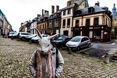 RACAILLE DE L'EURE (nARCOTO) Tags: rabbit lapin
