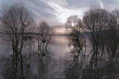 Twilight (oskaybatur) Tags: morning lake reflection nature silhouette turkey landscape spring pentax trkiye april bolu 2016 turkei glky justpentax pentaxart pentaxkr oskaybatur