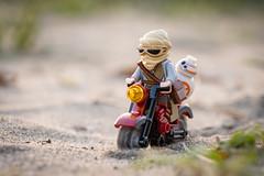 Towards More Dune Adventures (Reiterlied) Tags: sunset beach bike japan toy tokyo starwars lego outdoor rey moto minifig droid minifigure bb8 forceawakens