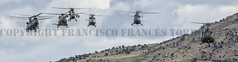 COPYRIGHT FRANCISCO FRANCS TORRONTERA (26) (OROEL (Francisco Francs Torrontera)) Tags: chopper tiger huey helicopter spanish helicopters chinook cougar tigre eurocopter ec135 ch47 ejrcitodetierra uh1 as532 attackhelicopter cargohelicopter ec665tigre ejrcitoespaol uh1h ch47d uh1huey spanisharmy ch47chinook fuerzasarmadasespaolas famet as532cougar ec665 helicoptercrew heavyhelicopter tigrehap spanisharmyhelicopter cougaral ha28hap fuerzasaeromvilesdelejrcitodetierra tigerhap airbushelicopter