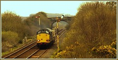 6K41 - 15th April (peterdouglas1) Tags: signals gorse class37 gaerwen directrailservices 37059 6k41 valleyflasks