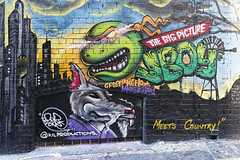 JBoy Hosier Lane 2016-04-24 (6D_1515) (ajhaysom) Tags: streetart graffiti australia melbourne hosierlane jboy canon1635l canoneos6d