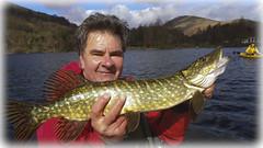 Happy days (Nicolas Valentin) Tags: uk cloud fish scotland pike lochlomond ecosse onthewater aldochlay kayakfishing kayakfishuk