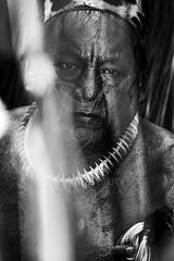 Kuikuro (Marco Abud) Tags: eye see olhar indian xingu cacique olhares oca abud kuikuro pinturaindígena tribokuikuro marcoabudfotografia marcoabud abudesigner abudfotografia índiodoxingu ocaindígena xingutribe indianpaiting