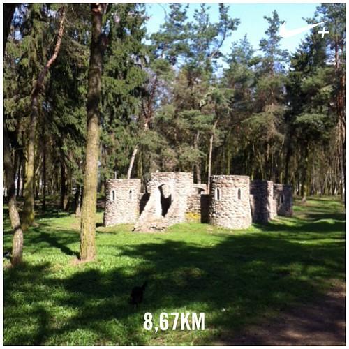#Parkrun #castle #sundaymotning