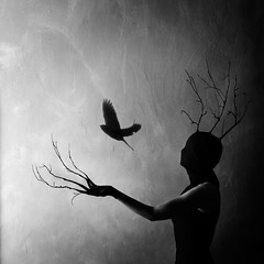 Release the birds; 2016 (Laurene Smith) Tags: selfportrait bird branches fineart faceless conceptual