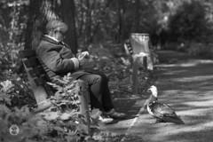 old lady & the duck (Ney Bokeh) Tags: france dof lyon bokeh 85mm mf cy planar carlzeiss parcdelattedor