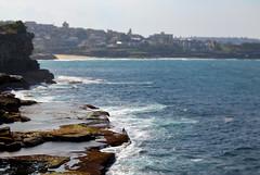 Bondi (nrose2rossi) Tags: ocean cliff beach bondi landscape photography fishing walk sydney australia