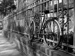 Gute Fahrt ins Wochenende! (ingrid eulenfan) Tags: bw schwarzweiss zaun fahrrad schw