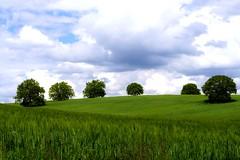 6 (sevdelinkata) Tags: grass landscape outdoor bulgaria