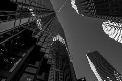 reflections (Karl-Heinz Bitter) Tags: bw toronto monochrome architecture blackwhite towers architektur monochrom glas hochhaus linien overflight khbitter