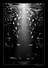 Door of Light (Mario Vani) Tags: pictures light wild wallpaper italy sun white black art face canon photography lights star monocromo photo eyes community italia gallery foto fotografie photos web tag religion photographers chapel social fresh professional persone uomo creation commercial e online awards portfolio bianco ritratto nero share emotive seconds fotoshop digest outstanding mistique allaperto 68 mario thefoto vani reporter