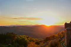 Sunset (Vassili Balocco) Tags: wood sunset italy italia tramonto outdoor valle valley tuscany montalcino toscana valdorcia bosco