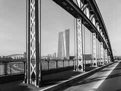 Auf der Honsellbrücke im Osthafen (JohannFFM) Tags: frankfurt ost ezb osthafen honsellbrücke