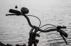 Rverie ... daydream (Larch) Tags: water bike eau handlebar daydream tang rverie bicyclebell guidon etangdethau sonette