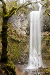 Double Falls (doveoggi) Tags: longexposure trees mist oregon forest waterfall moss hike silverfallsstatepark 3808