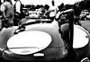 Brooklands Festival of Wheels 2015 (belly.1964) Tags: bw cars festival mono jaguar sigma1850f28 nikond80 brooklandsgardencenter