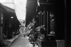 Guardian's Shrine (Purple Field) Tags: street leica bw film monochrome japan analog 35mm walking 50mm alley kyoto shrine fuji iso400 rangefinder summicron   neopan m3   guardian presto  f20             stphotographia